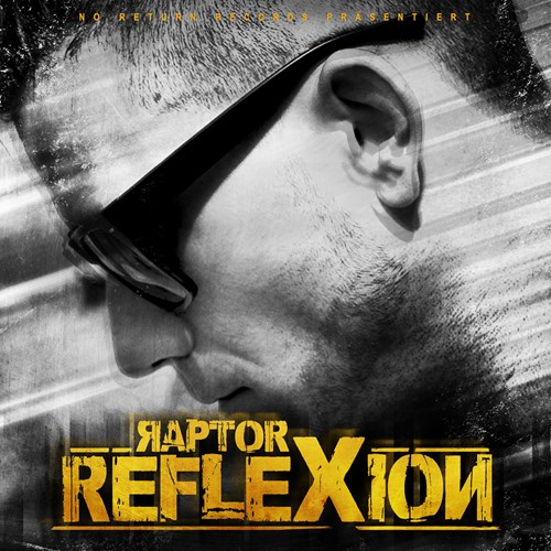 "Picture of Raptor ""Reflexion"""